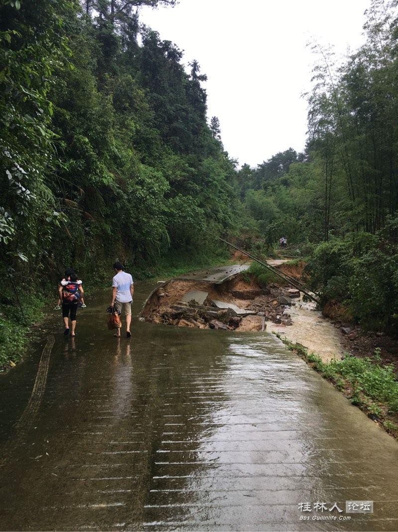 桂林六塘船岭竹海景区暂停对游客开放